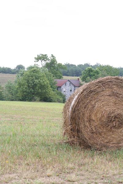 on-the-farm-160